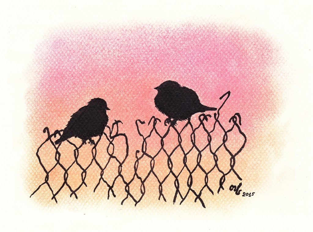 Sparrows-on-the-wire-netting.jpg