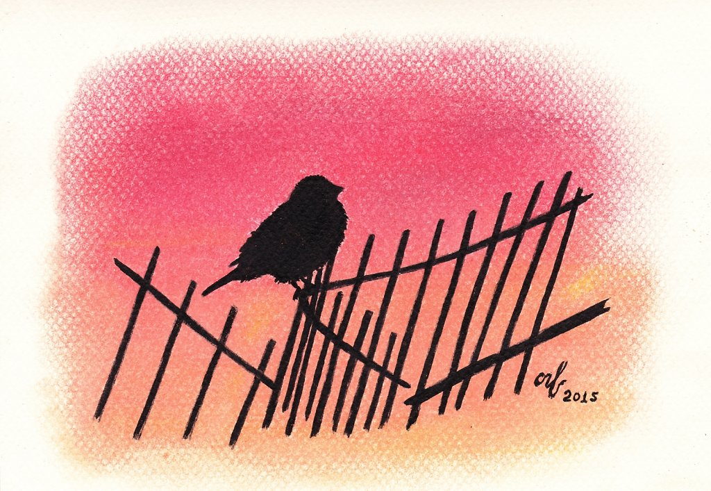 Sparrow-on-the-fence.jpg